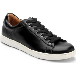Baldwin Lace up Sneaker found on MODAPINS from Vionic Group LLC for USD $129.95