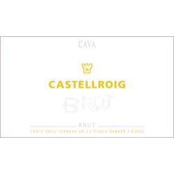 Castellroig Cava Brut - Champagne & Sparkling